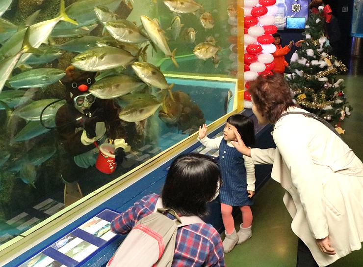 トナカイに扮したダイバーと触れ合う来場客=魚津水族館
