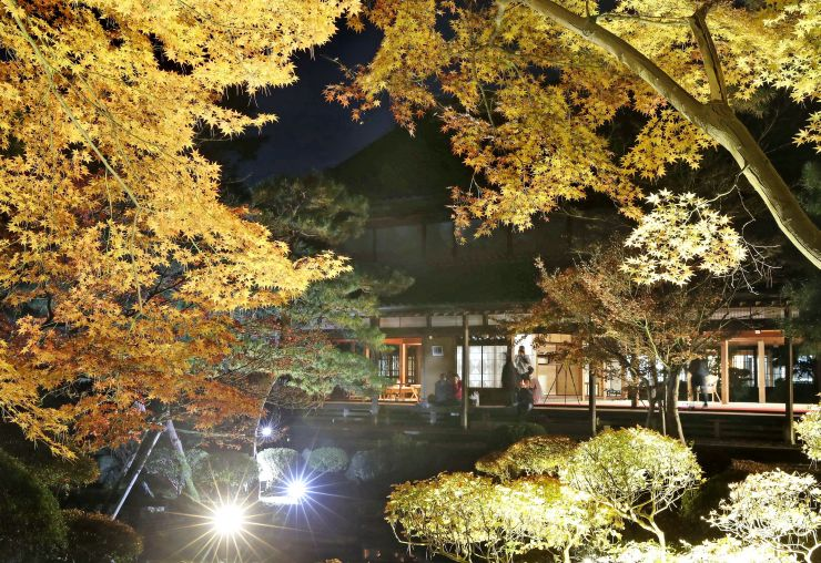光に照らされ美しく浮かび上がる北方文化博物館の庭園=18日、新潟市江南区