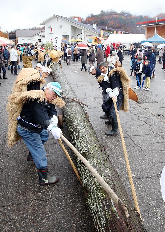 降雪を願い、スギの大木を引っ張る住民ら=イオックス・アローザスキー場