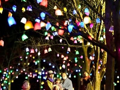 木々照らす「笑顔の実」 あわら・創作の森に光の芸術