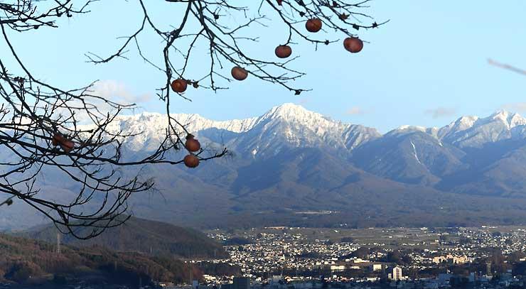 白く雪化粧した八ケ岳連峰と残り柿