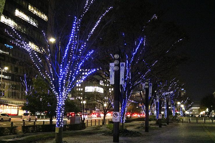 JR富山駅北地区をイルミネーションで照らす「駅北ルミエ」