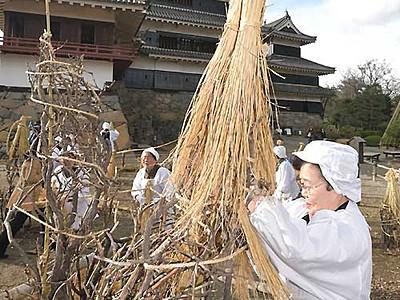 冬囲い「わらぼっち」出番 松本城で冬への準備