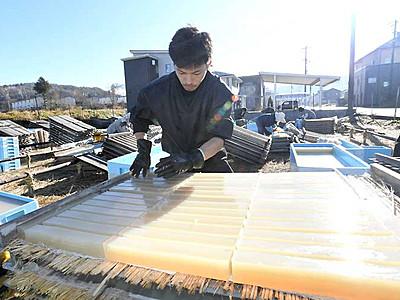 冬晴れにキラリ、寒天「天出し」 茅野で作業始まる