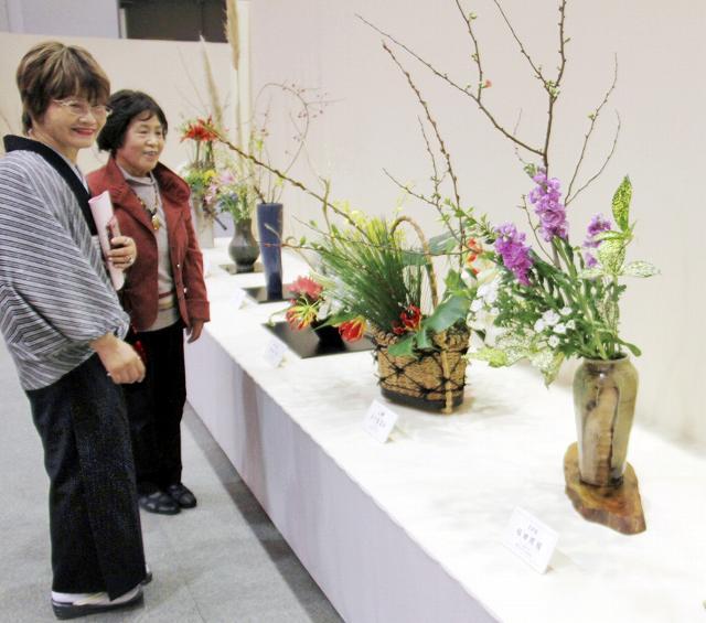 冬を演出する生け花が並ぶ「華のフェスティバル」=9日、福井市のベル
