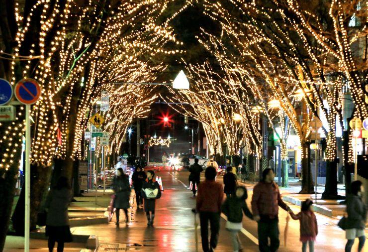 約26万個の電球がともされたけやき通り=9日夜、新潟市中央区