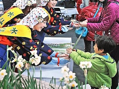 越前海岸彩る水仙、海の幸堪能を 例年より1カ月早く祭り