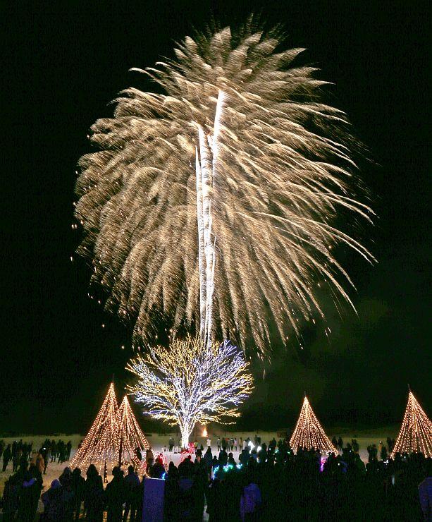 平和への祈りを込めて打ち上げられた花火=17日午後7時30分ごろ、長岡市の国営越後丘陵公園