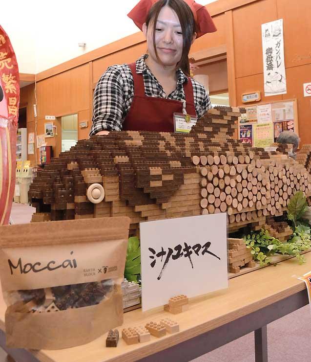 南相木村故郷ふれあい公社が開発したブロック玩具とそのブロックでつくったシナノユキマス