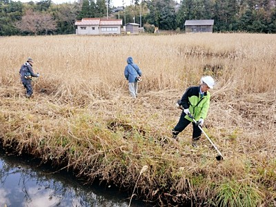 北潟湖湿地帯に通路を整備 環境団体「自然観察できる場へ」