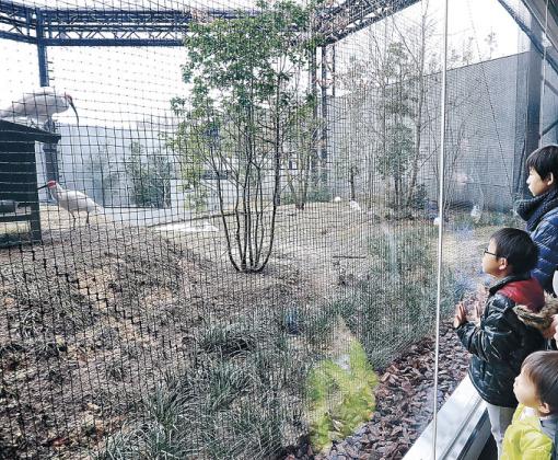 家族連れでにぎわうトキ里山館=能美市のいしかわ動物園