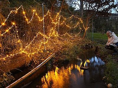 自然の大切さ訴え「ホタルの光」点灯 上越・直江津の公園