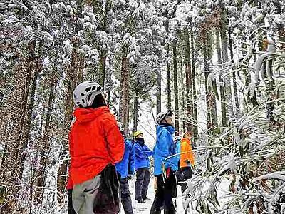 雪の積もった森の上を滑空可能に 福井県池田町の体験施設