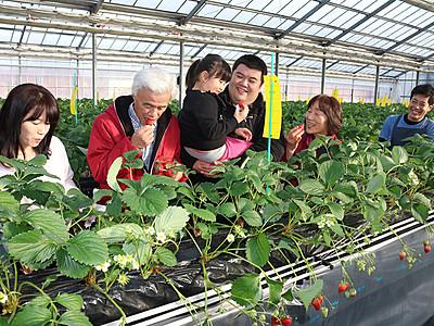 野菜・果物収穫いかが 大沢野に観光農園