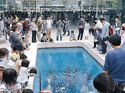 金沢21美、国内屈指の集客力 入館2000万人突破