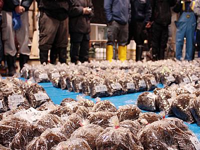 海藻ナガラモ初出荷 氷見魚市場、海とろめしも登場