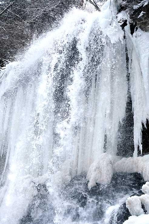 水しぶきが凍り、つららができた横谷渓谷の乙女滝。ダイナミックな水量との対比を見せていた=16日、茅野市