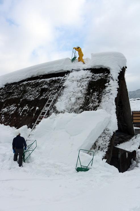 茅ぶき屋根の雪を下ろす財団職員ら