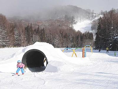 戸隠スキー場で「忍者」気分に こぶや筒の新コース完成