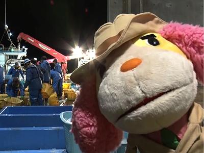 「ブリ」テーマに動画配信 富山市が冬の味覚PR