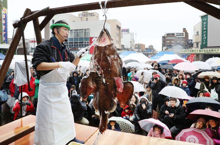 「あんこう祭り」で実演されたアンコウのつるし切り。被災地ににぎわいが戻った=22日、糸魚川市大町1