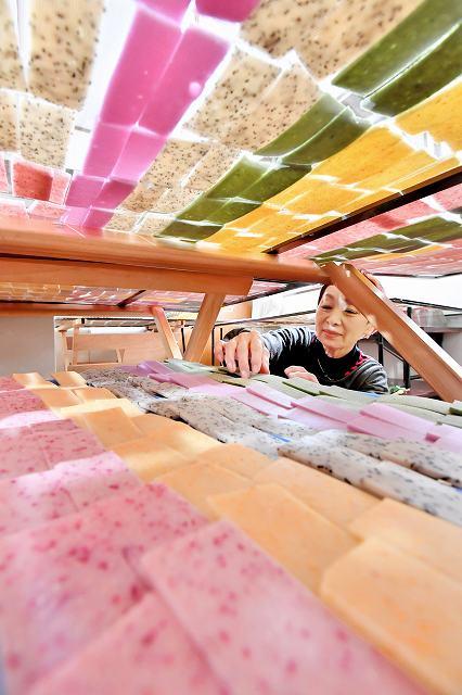 網の上にずらりと並べられ、乾燥を待つ色とりどりのかき餅=23日、福井市獺ケ口町の美山そば工房木ごころ