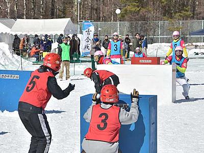 飛び交う「雪球」白熱の対戦 立科で雪合戦大会