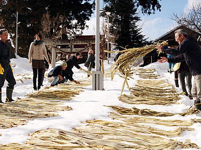 雪上にコウゾさらす 平で悠久紙製造体験