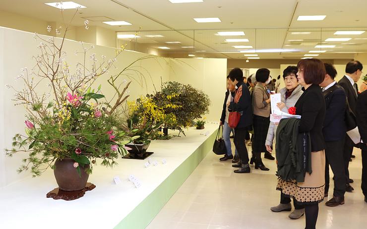色とりどりの花々が並ぶ会場=高岡大和