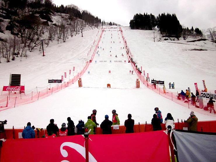 2013年のモーグル全日本選手権でたいらスキー場に作られたコース=南砺市梨谷