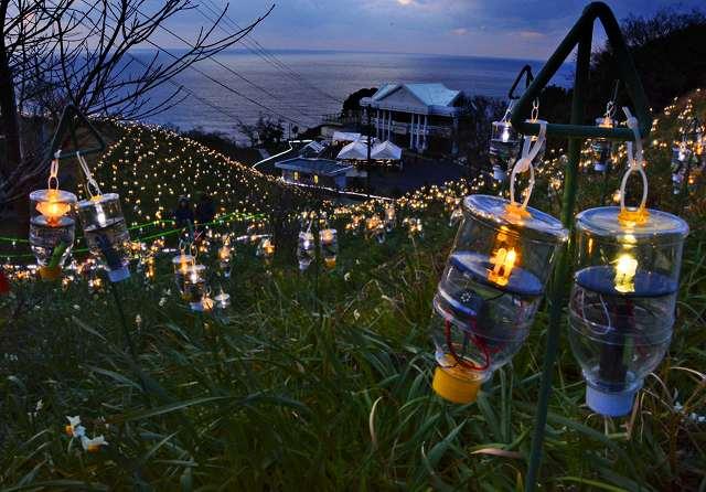 水仙畑にペットボタル約1万6千個の明かりが広がったイベント「水仙岬のかがやき」=11日、福井県越前町血ケ平の越前岬水仙ランド