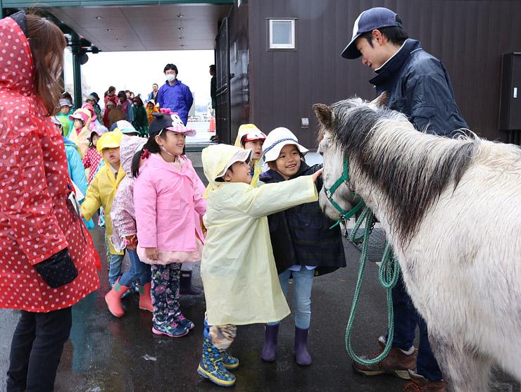 出迎えてくれた馬をなでる子どもたち=富山市ファミリーパーク
