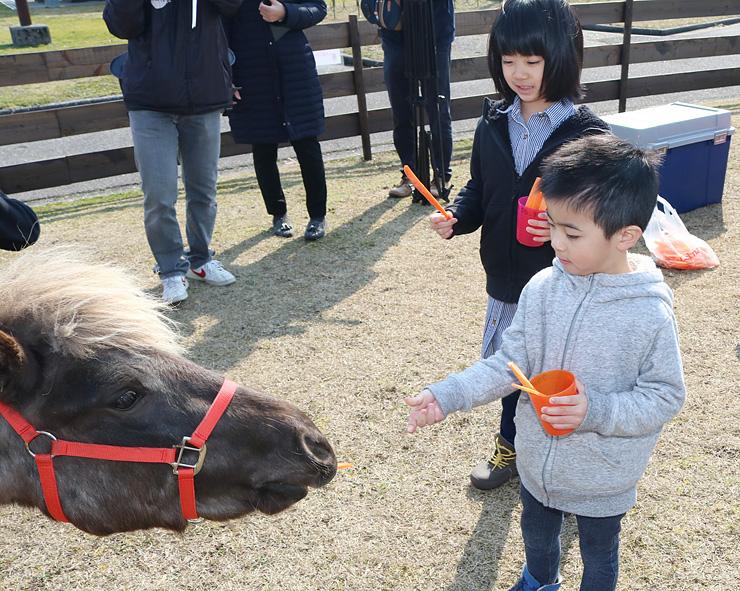 「お馬さんかわいいね」と餌をやる子ども