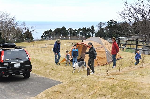 日本海が一望でき、車が横付けできるオートキャンプ場=福井市赤坂町のガラガラ山越前水仙の里キャンプ場