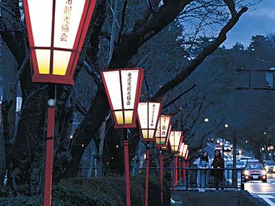 開花待つ、ぼんぼり点灯 金沢・広坂通り