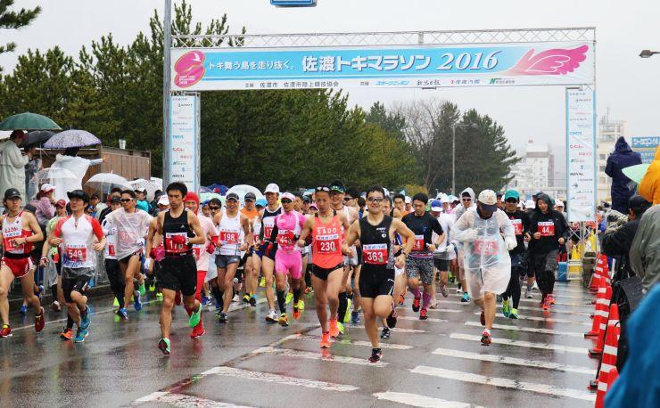 雨の中スタートした前回のトキマラソン。この後風雨が強まり、途中で中止となった=2016年4月17日、佐渡市両津湊