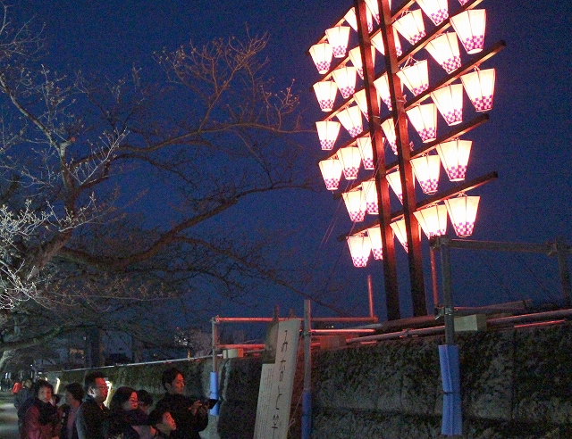 照手・木町さくら通りに設置された竿燈=2日夜、福井市