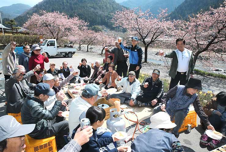暖かな陽気で見頃を迎えた河津桜を楽しむ花見客=5日、飯田市南信濃和田