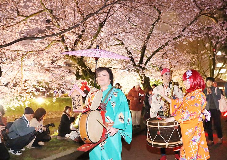 夜桜の下を陽気に練り回るチンドンマン=富山城址公園(写真部部長デスク・垣地信治)