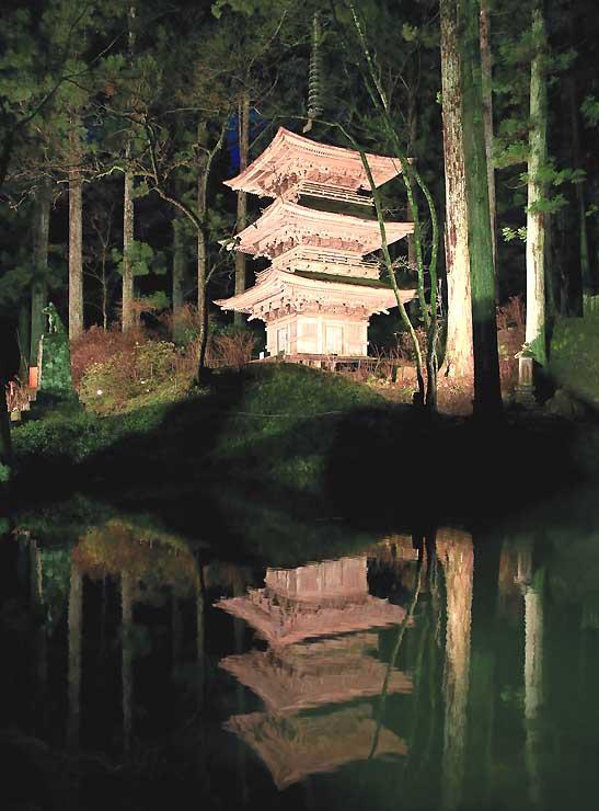 ライトアップが始まった光前寺の境内で池の水面に浮かび上がる三重塔=7日午後7時、駒ケ根市