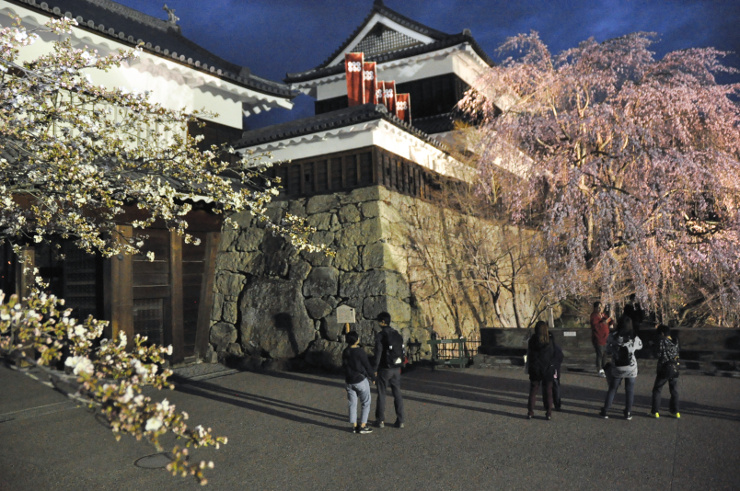 開花したソメイヨシノ(左)と見頃のシダレザクラを楽しむ見物客ら=8日午後6時40分、上田城跡公園