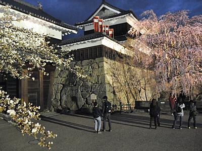 春咲く県内、上田で夜桜