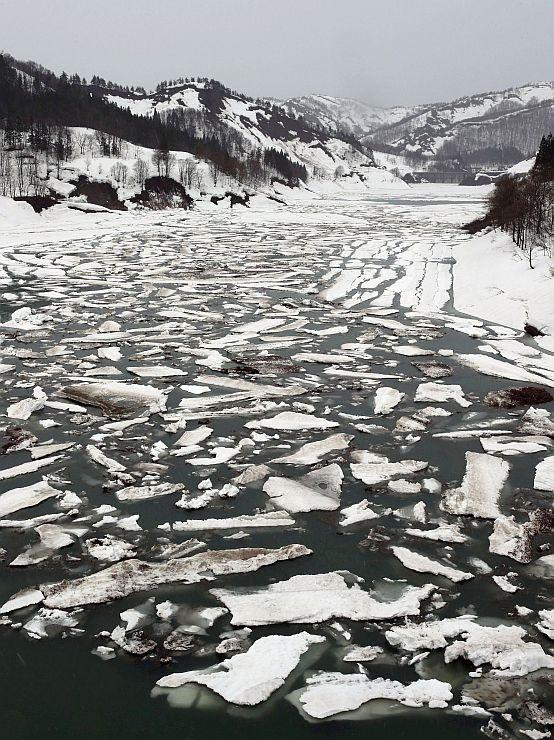流氷のように湖面に浮かぶ雪の塊=11日、魚沼市の破間川ダム