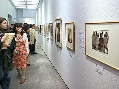 猫の今昔見比べて 浮世絵など 長岡・歴博、展覧会開幕