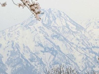 妙高山に春の足音 「跳ね馬」出現