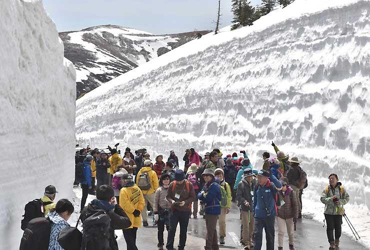 そびえ立つ雪の壁の間を歩く参加者=20日、群馬県中之条町