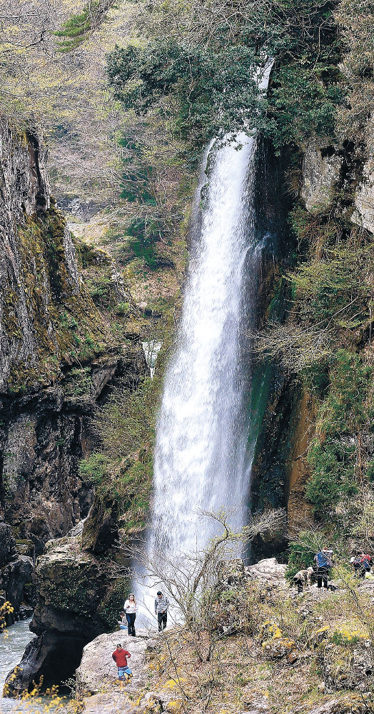 白山の雪解けで水量が増した綿ケ滝=白山市下吉谷町