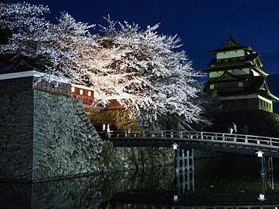高島城に浮かぶ桜色 ライトアップに大勢の人出