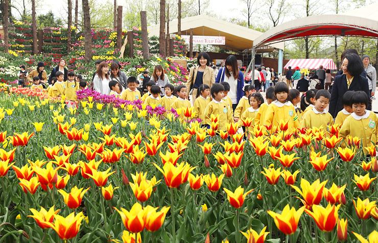 となみチューリップフェアが開幕し、色とりどりに咲く花壇を眺める子どもたち=砺波チューリップ公園
