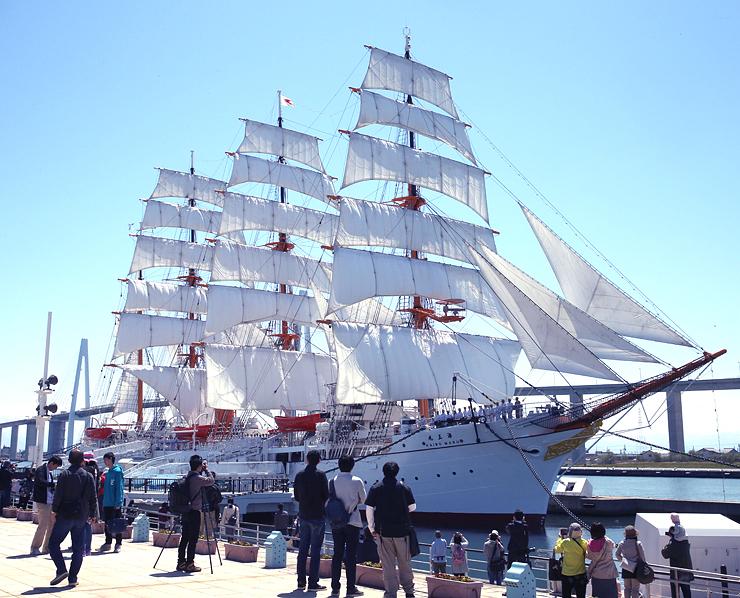 29枚の帆を全て張り、華麗な姿の帆船海王丸=射水市海王町、海王丸パーク